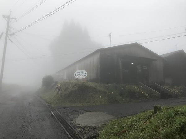 濃霧注意報!【キッチン・ブレスBLOG】