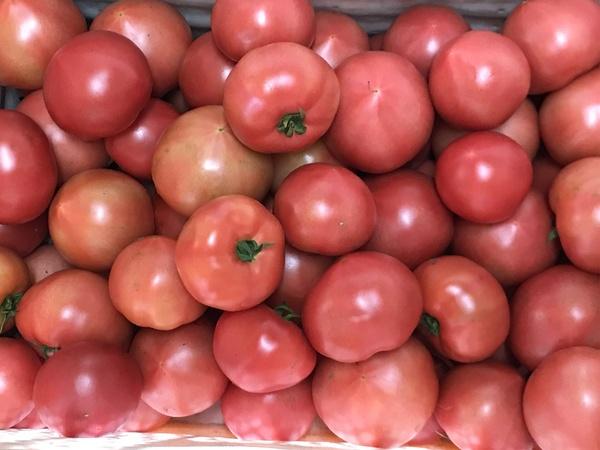 トマトがうまい!【キッチン・ブレス日記】