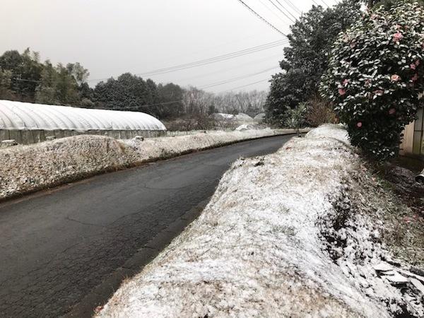うっすら雪景色【キッチン・ブレスBLOG】