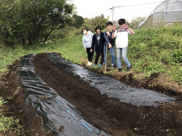 野菜を植える【キッチン・ブレス日記】
